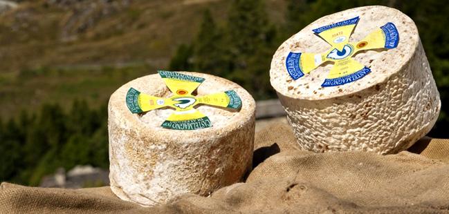 cast-alp-mont