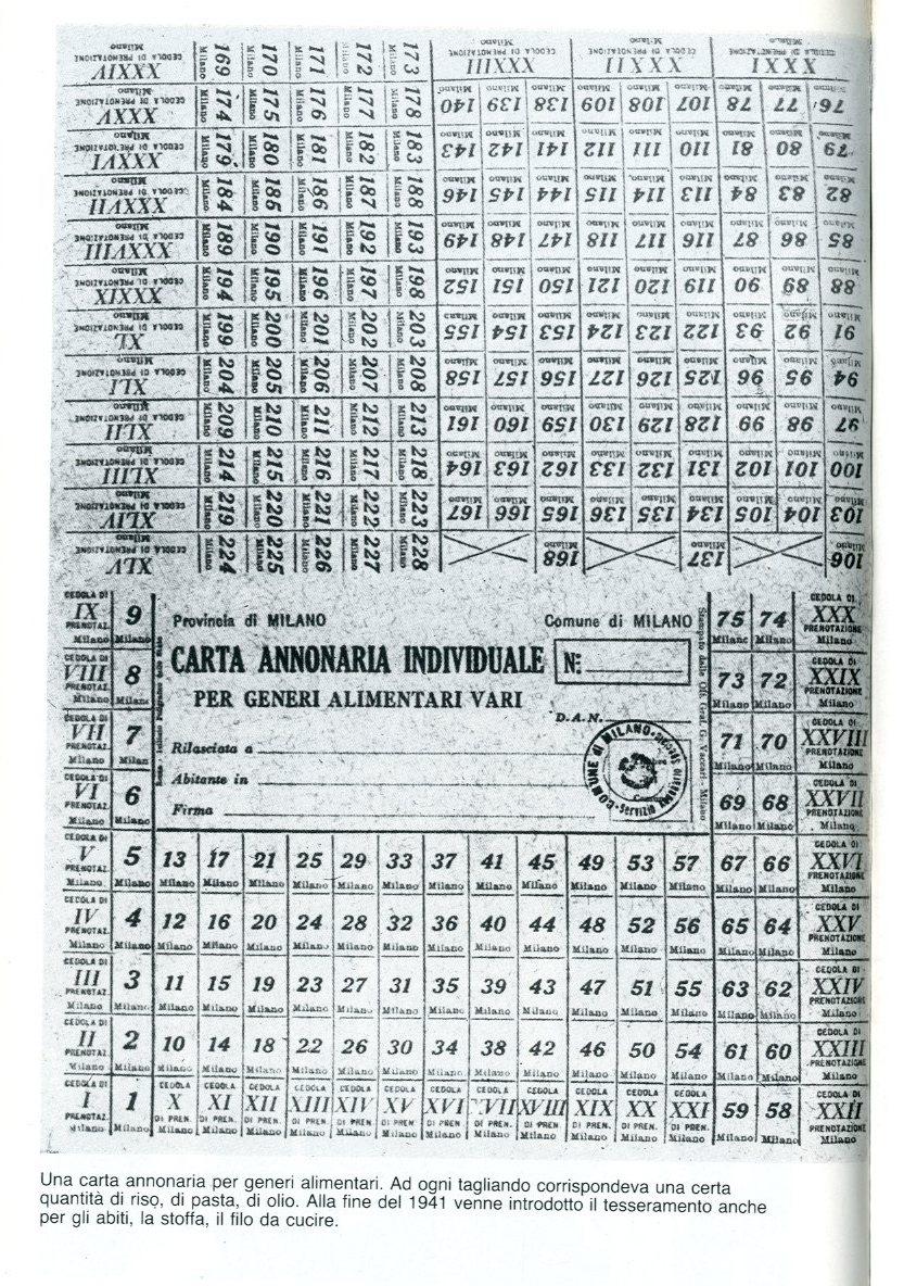 img345 - Copia (2)