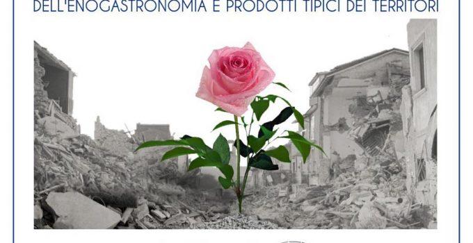 LA FORZA DI RINASCERE  TERREMOTO DEL CENTRO ITALIA